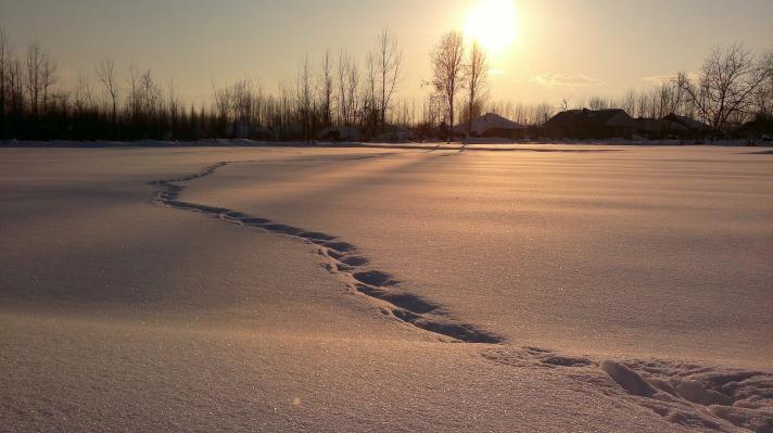snow-259974_1920